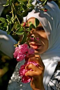 marocaine-rose